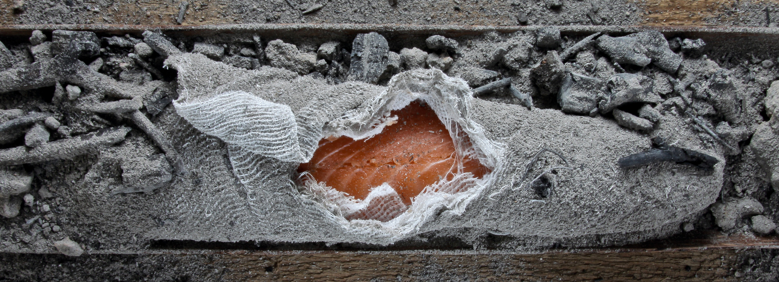 Lachs in Asche – Heiko Antoniewicz